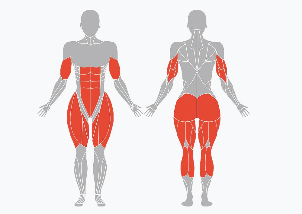 magnetic muscle stimulation treatment parts